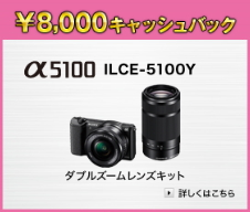 α5100 ILCE-5100Y